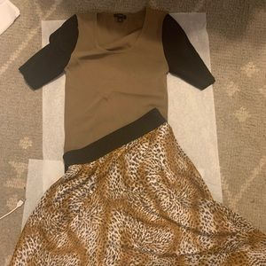 XS Ann Taylor Sweater with leopard skirt
